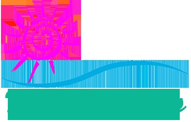 Kimi Designs Teal Logo
